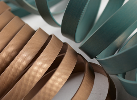 guide strips PTFE